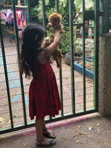 דובידול חפץ מעבר ככלי עזר לכניסה לגן