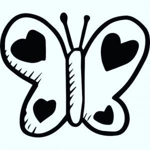 פרפרים בלב הסתגלות והתחלות חדשות